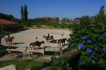 Manege Desperado ranch