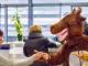 Pro Sky überrascht Reisende mit Rentieren auf dem Flugfeld
