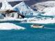 TUI Rundreisen: 2020 ist das perfekte Jahr für Island