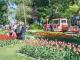 Sportliche Highlights, spannende Ausstellungen und bunte Tulpenvielfalt am Genfersee